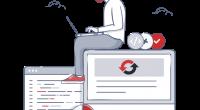 wp-reset-coder-at-work