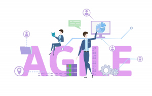 Are Agile Certifications Worth It